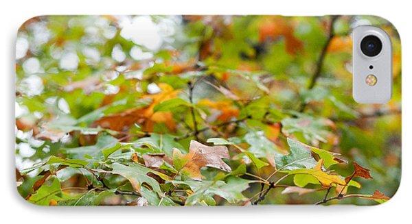 Autumn Phone Case by Barbara Shallue