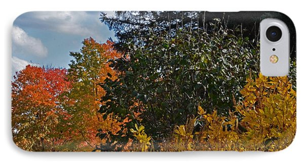 Autumn Beauty IPhone Case by Judy Wolinsky