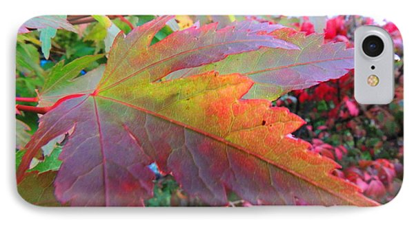 IPhone Case featuring the photograph Autumn Beauty by Karen Horn