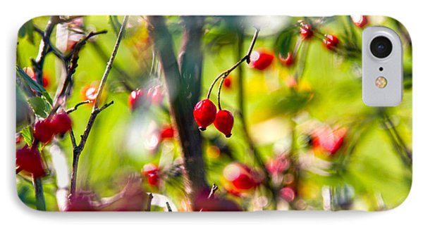 Autumn Berries  IPhone Case by Stelios Kleanthous