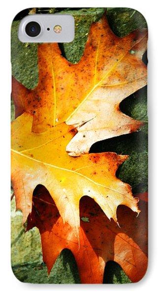 Autumn Blaze Phone Case by JAMART Photography