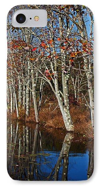 Autumn Blue Phone Case by Karol Livote
