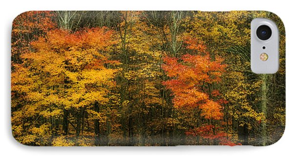 IPhone Case featuring the photograph Autumn Bright by Joan Bertucci