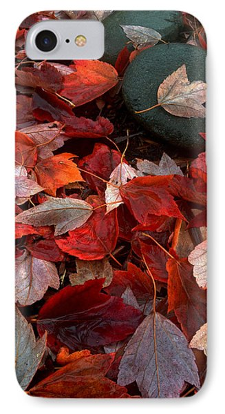 IPhone Case featuring the photograph Autumn Broadcast by Gwyn Newcombe