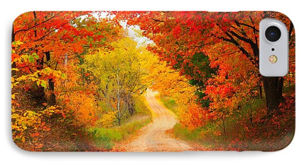 IPhone Case featuring the photograph Autumn Cameo Road by Terri Gostola