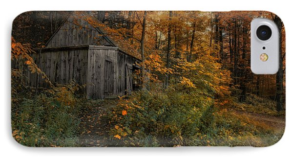 Autumn Canopy IPhone Case by Robin-Lee Vieira