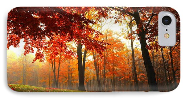 Autumn Canopy IPhone Case by Terri Gostola