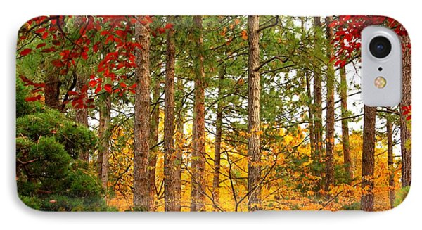 Autumn Canvas IPhone Case by Carol Groenen
