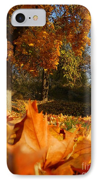 Autumn Carpet IPhone Case by KD Johnson