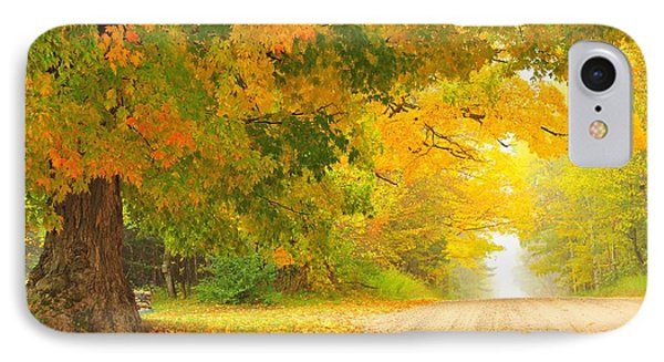 Autumn Cascade IPhone Case by Terri Gostola