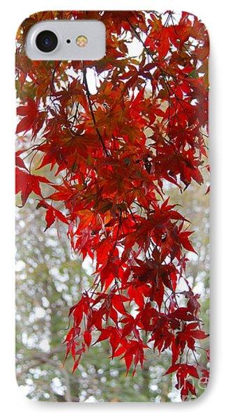 Autumn Curtain  IPhone Case