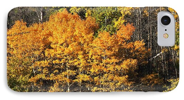 Autumn Color At The Continental Divide IPhone Case by Kae Cheatham