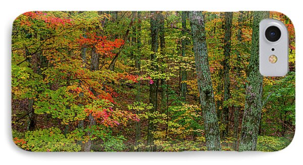Autumn Color In Brown County State IPhone Case by Chuck Haney