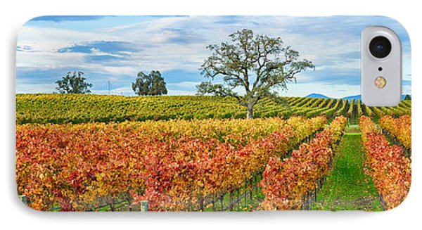 Autumn Color Vineyards, Guerneville IPhone Case by Panoramic Images