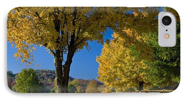 Autumn Colors Phone Case by Brian Jannsen