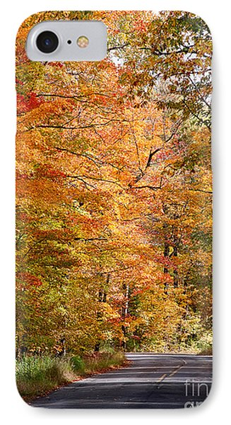 IPhone Case featuring the photograph Autumn Colors - Colorful Fall Leaves Wisconsin IIi by David Perry Lawrence