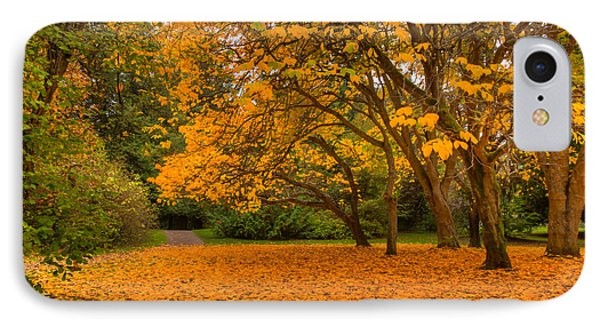 Autumn Colors I IPhone Case by Chris McKenna
