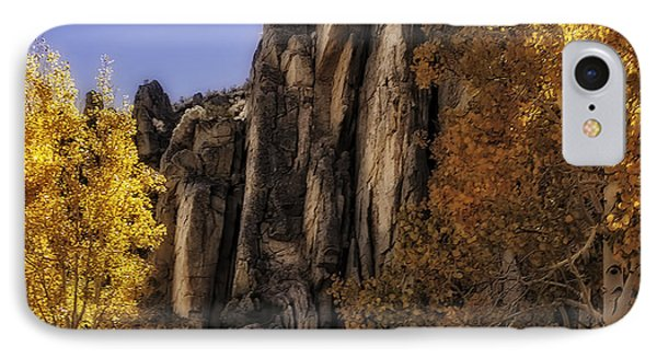 Autumn Colors IPhone Case by Nancy Marie Ricketts