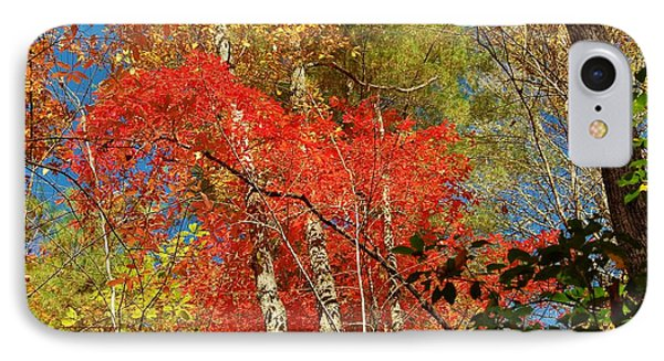 Autumn Colors IPhone Case by Patrick Shupert