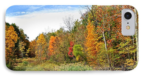 Autumn Colors Phone Case by Frozen in Time Fine Art Photography