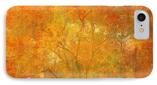 Autumn Colors IPhone Case by Suzanne Powers