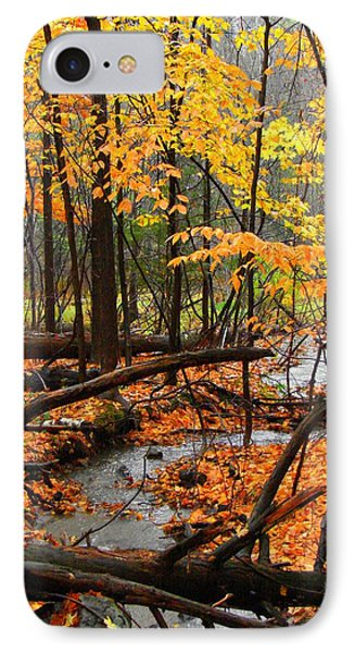IPhone Case featuring the photograph Autumn Creek In The Rain by Rodney Lee Williams
