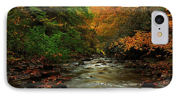 Autumn Creek IPhone Case by Melissa Petrey