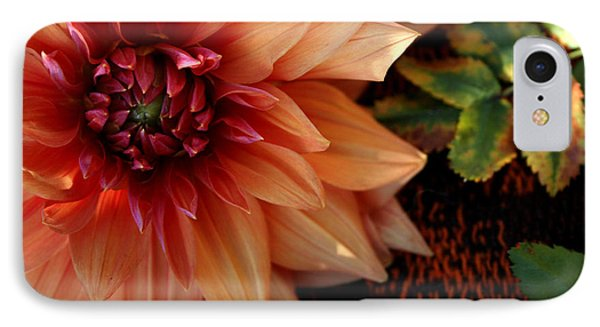 IPhone Case featuring the photograph Autumn Dahlia Darling by Jeanette French