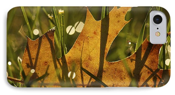 Autumn Dew IPhone Case by Penny Meyers