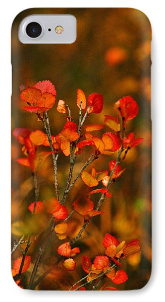 IPhone Case featuring the photograph Autumn Emblem by Jeremy Rhoades