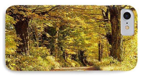 Autumn Evening IPhone Case by Gerald Hiam