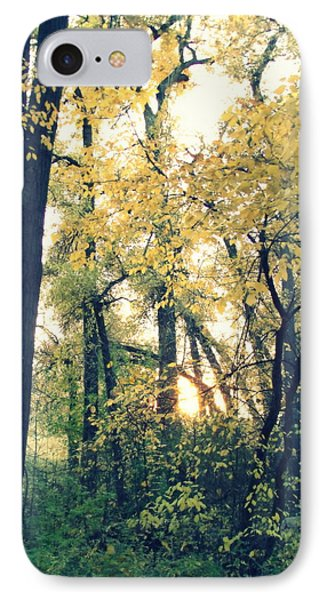 Autumn Evening Phone Case by Jessica Myscofski
