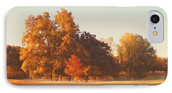 Autumn Evening On The Golf Course IPhone Case by Ann Powell