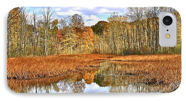 Autumn Fades Phone Case by Frozen in Time Fine Art Photography