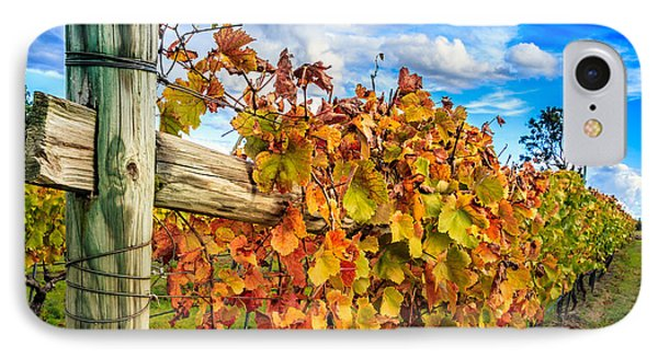 Autumn Falls At The Winery IPhone Case by Peta Thames