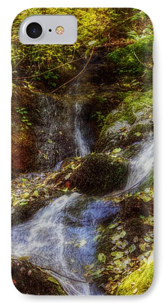 Autumn Falls Phone Case by Melanie Lankford Photography