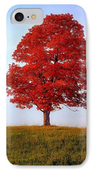 Autumn Flame Phone Case by Steve Harrington