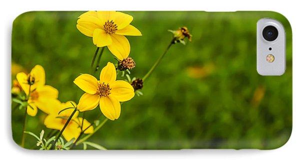 Autumn Flowers IPhone Case by David Warrington