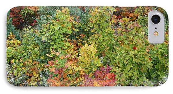 Autumn Foliage Killarney Provincial Park IPhone Case