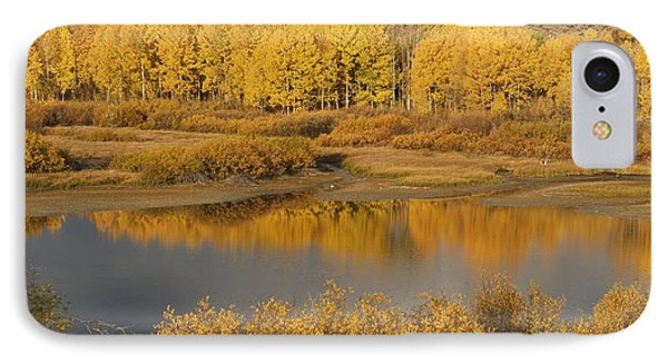 Autumn Foliage Surrounds A Pool In The Phone Case by David Ponton