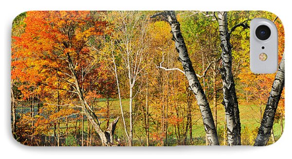 Autumn Forest Scene - Litchfield Hills Phone Case by Expressive Landscapes Fine Art Photography by Thom