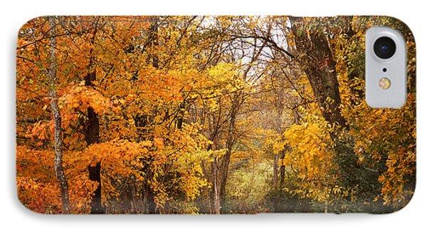 Autumn Gate IPhone Case by TnBackroadsPhotos