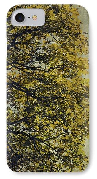 IPhone Case featuring the photograph Autumn Glory by Ari Salmela