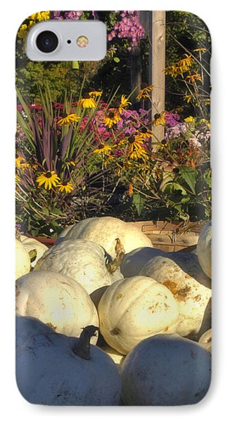 Autumn Gourds Phone Case by Joann Vitali