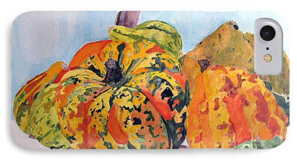 Autumn Gourds IPhone Case by Sandy McIntire