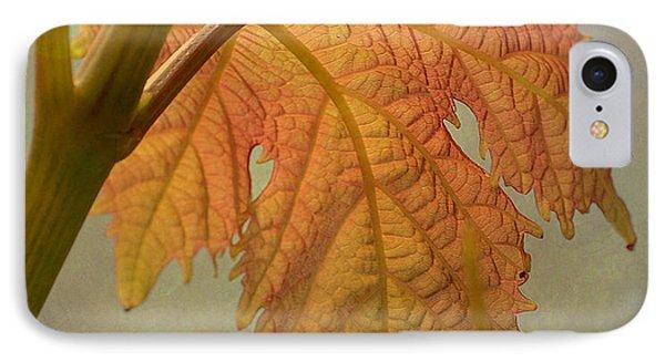 Autumn Grapevine Phone Case by Fraida Gutovich