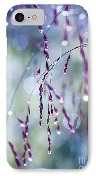 Autumn Grasses IPhone Case by Amy Porter