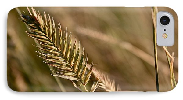 Autumn Grasses IPhone Case by Linda Bianic