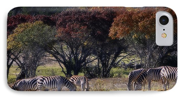 Autumn Grazing Phone Case by Joan Carroll