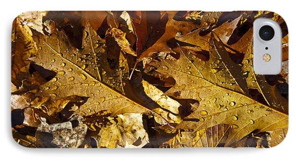 Autumn Groundcover IPhone Case